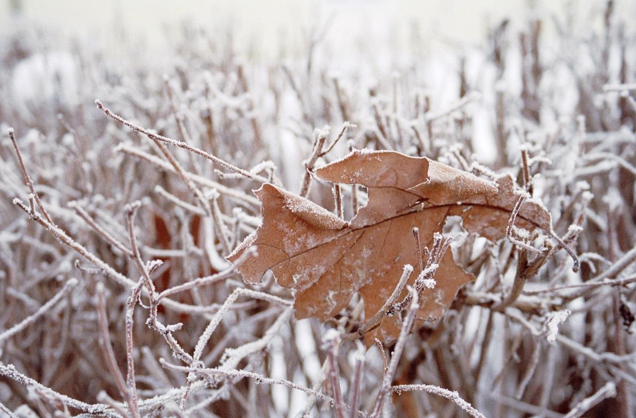 Погода в Челябинске и области: предупреждение о чрезвычайной опасности от синоптиков