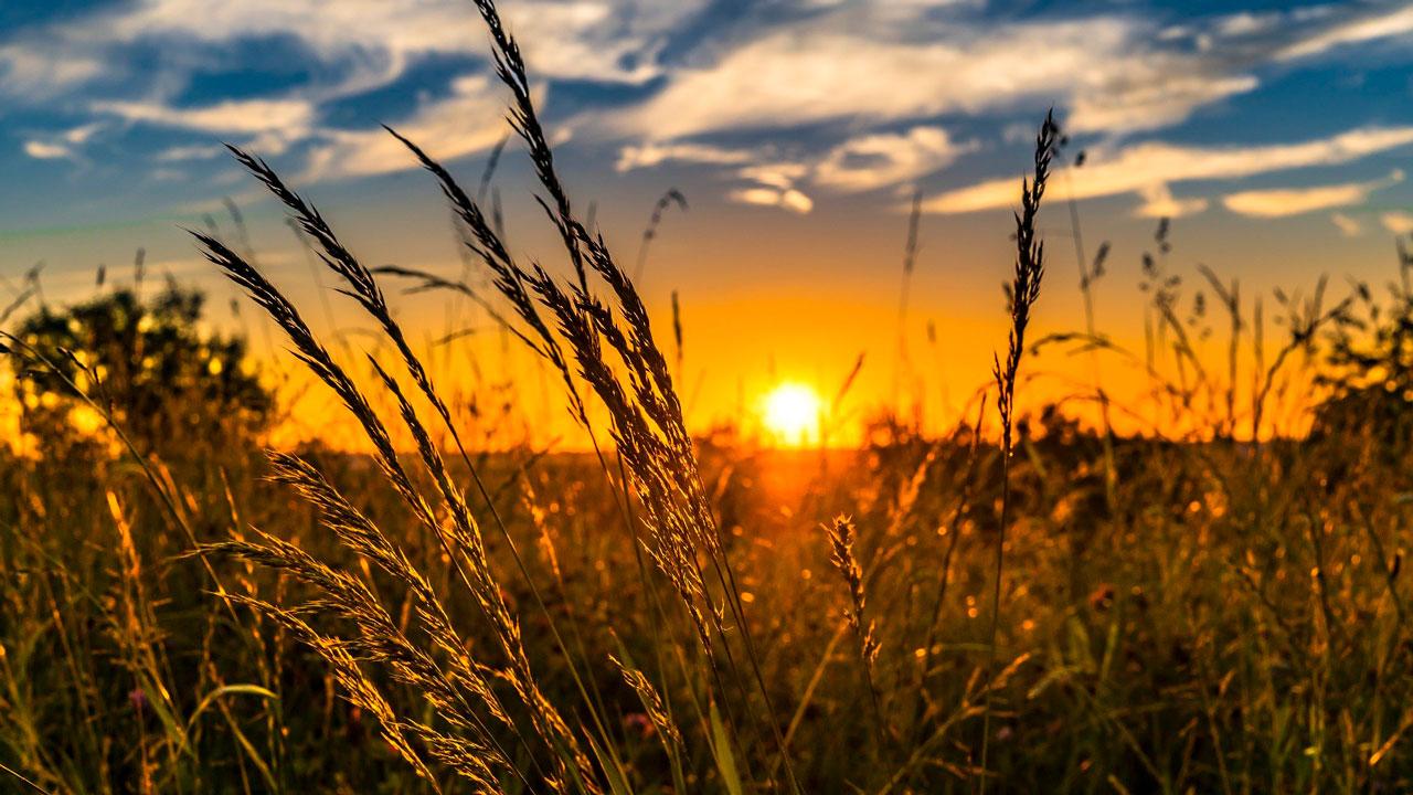 Погода в Челябинске: синоптики прогнозируют жаркую неделю