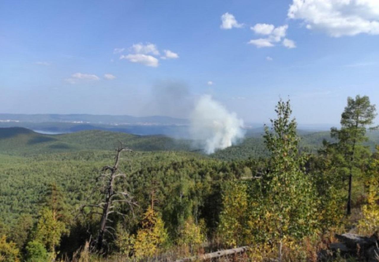 Лес загорелся возле популярного места отдыха в Челябинской области