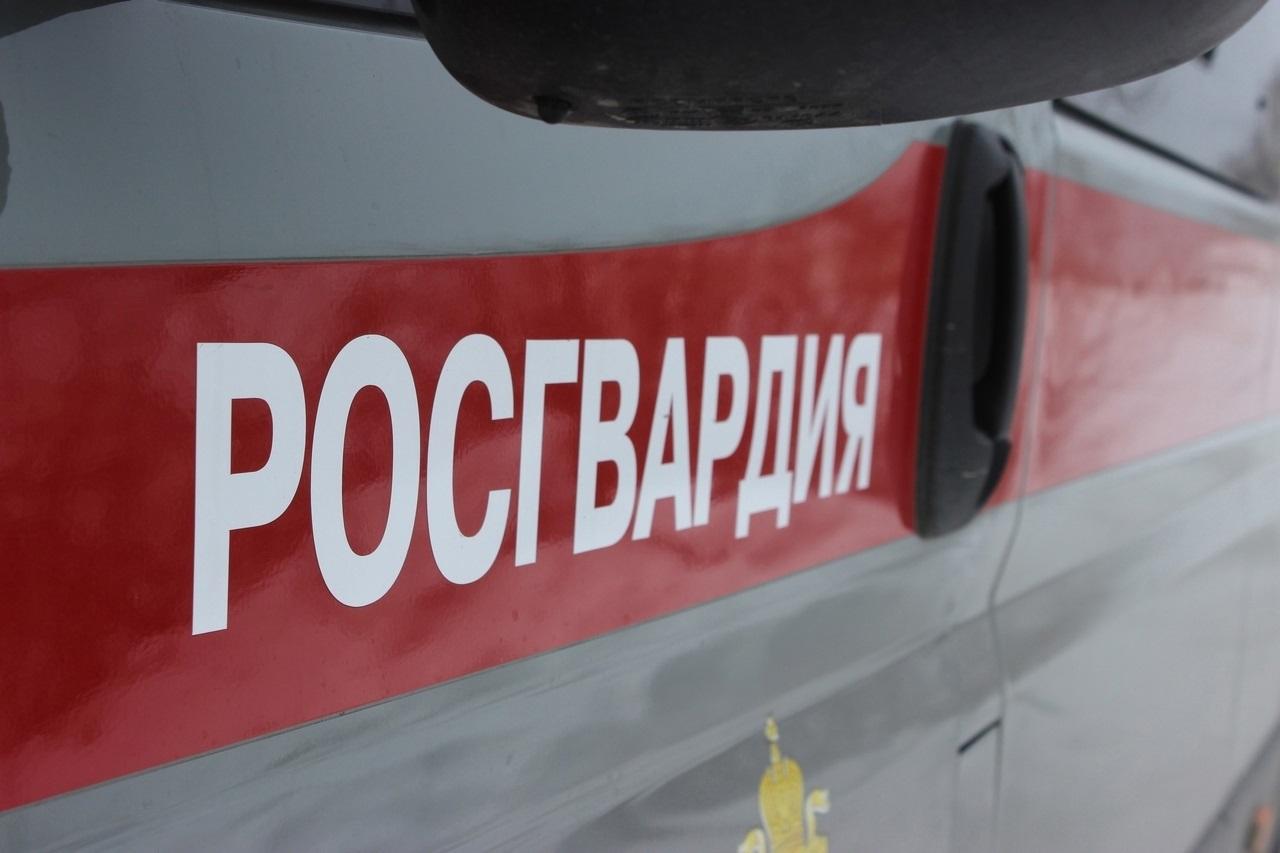 Минометную мину обнаружили у жилого дома в Челябинске