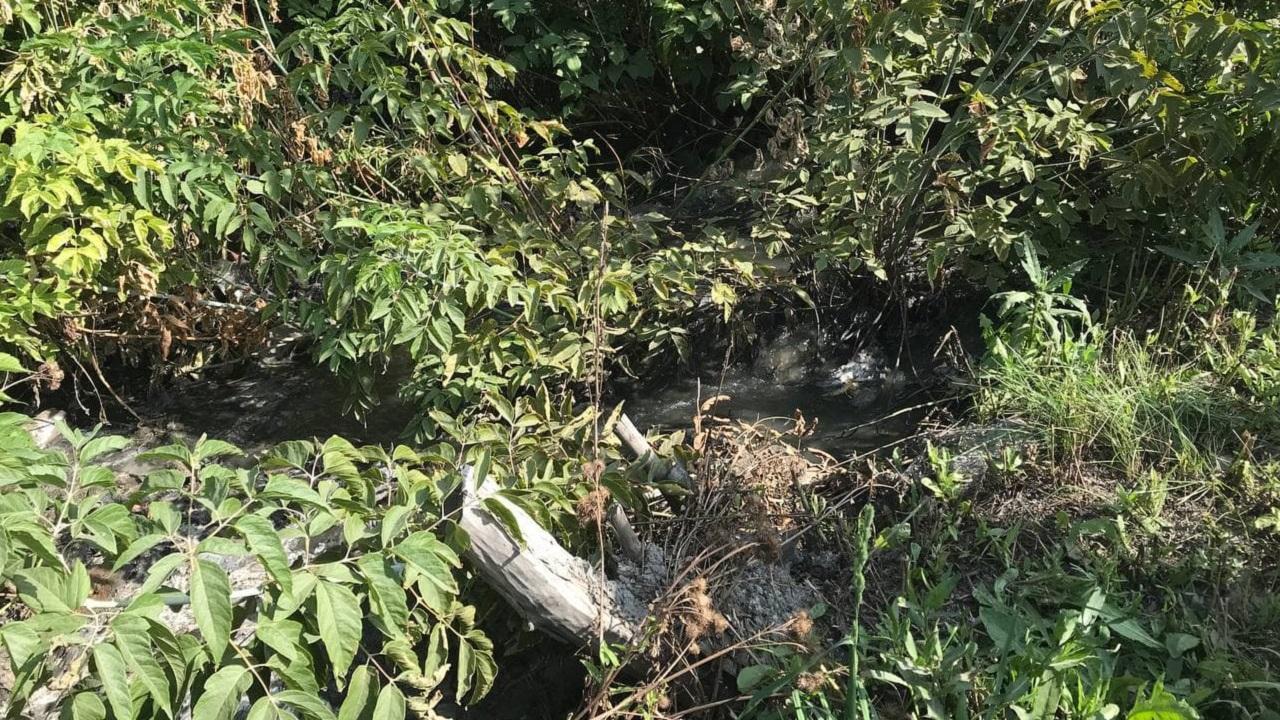 Зловонный ручей: источник выброса сероводорода найден в Челябинске