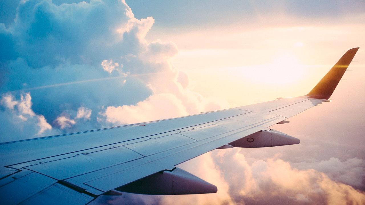 Самолет столкнулся с птицей в аэропорту Челябинска