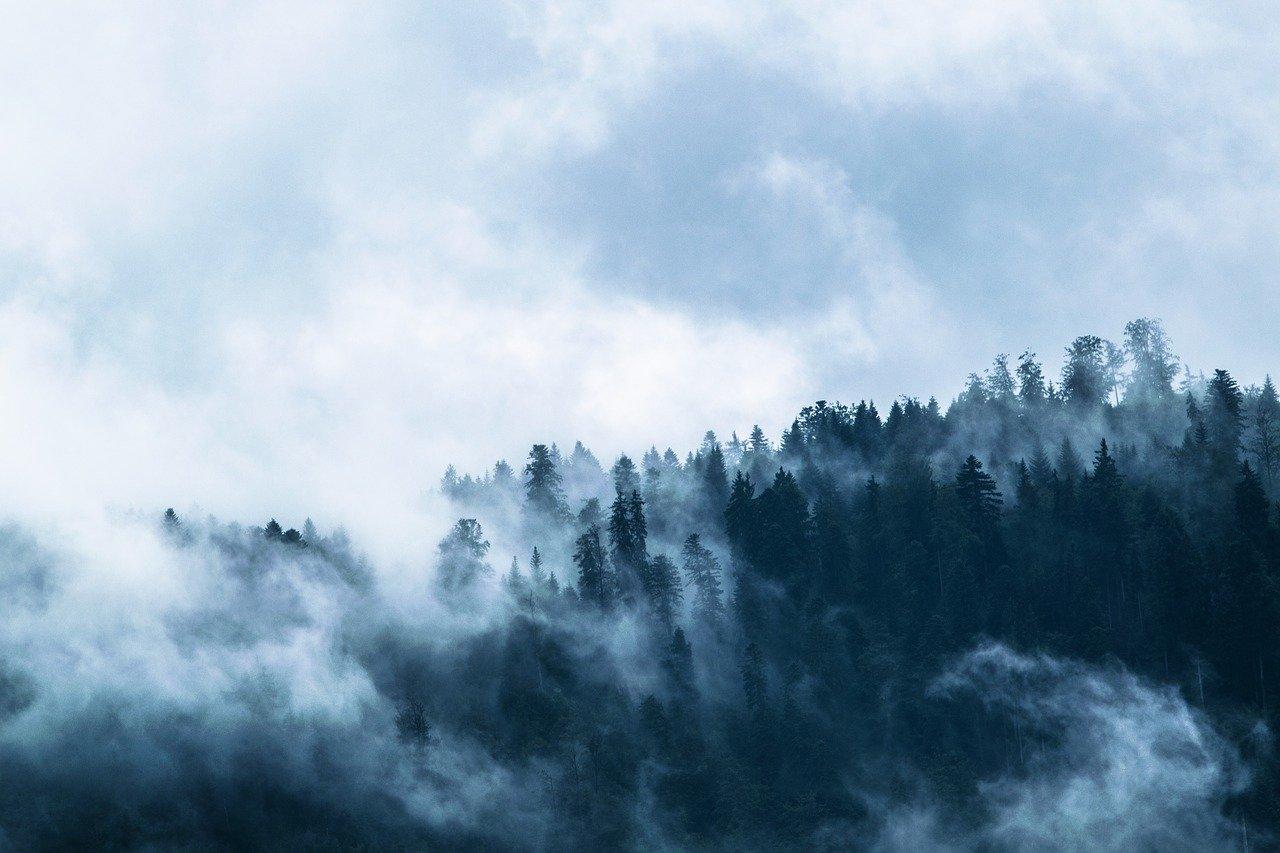 В Минэкологи назвали причину тумана и запаха гари в Челябинске
