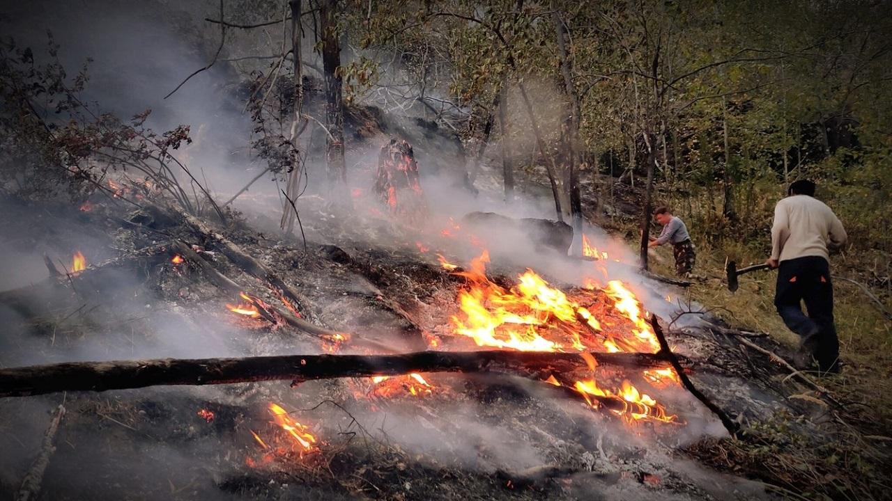 """Сотни пожарных и волонтёров тушат лесной пожар возле """"Горного ущелья"""" на Южном Урале"""