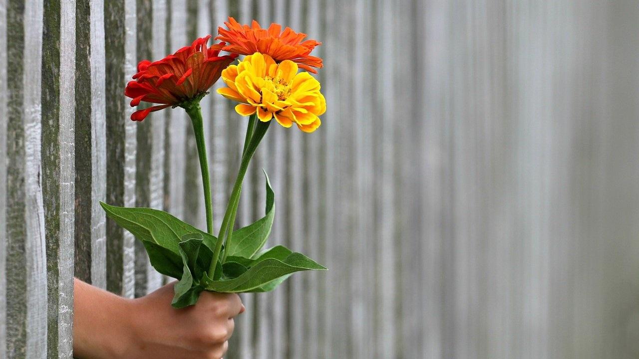 Как составить букет из цветов: самые необычные способы от челябинских флористов