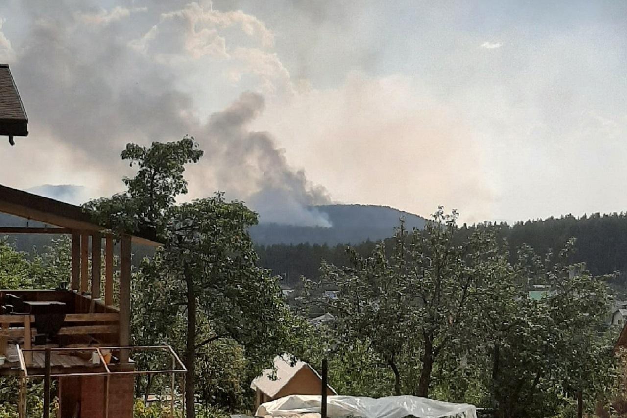 Рядом с садовыми участками в Челябинской области загорелся лес ВИДЕО