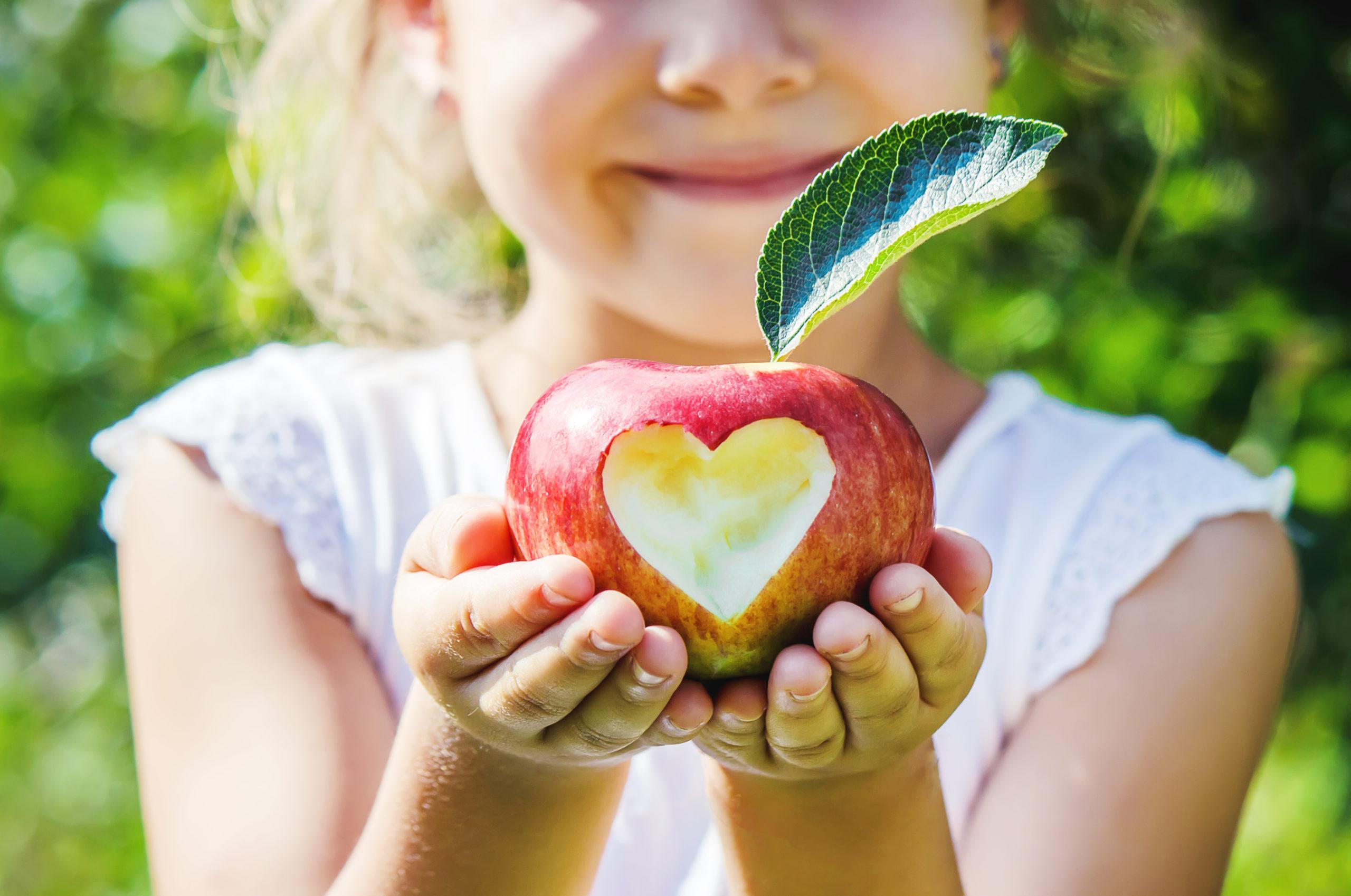 Яблоки: польза и вред, фруктовая диета и советы диетологов