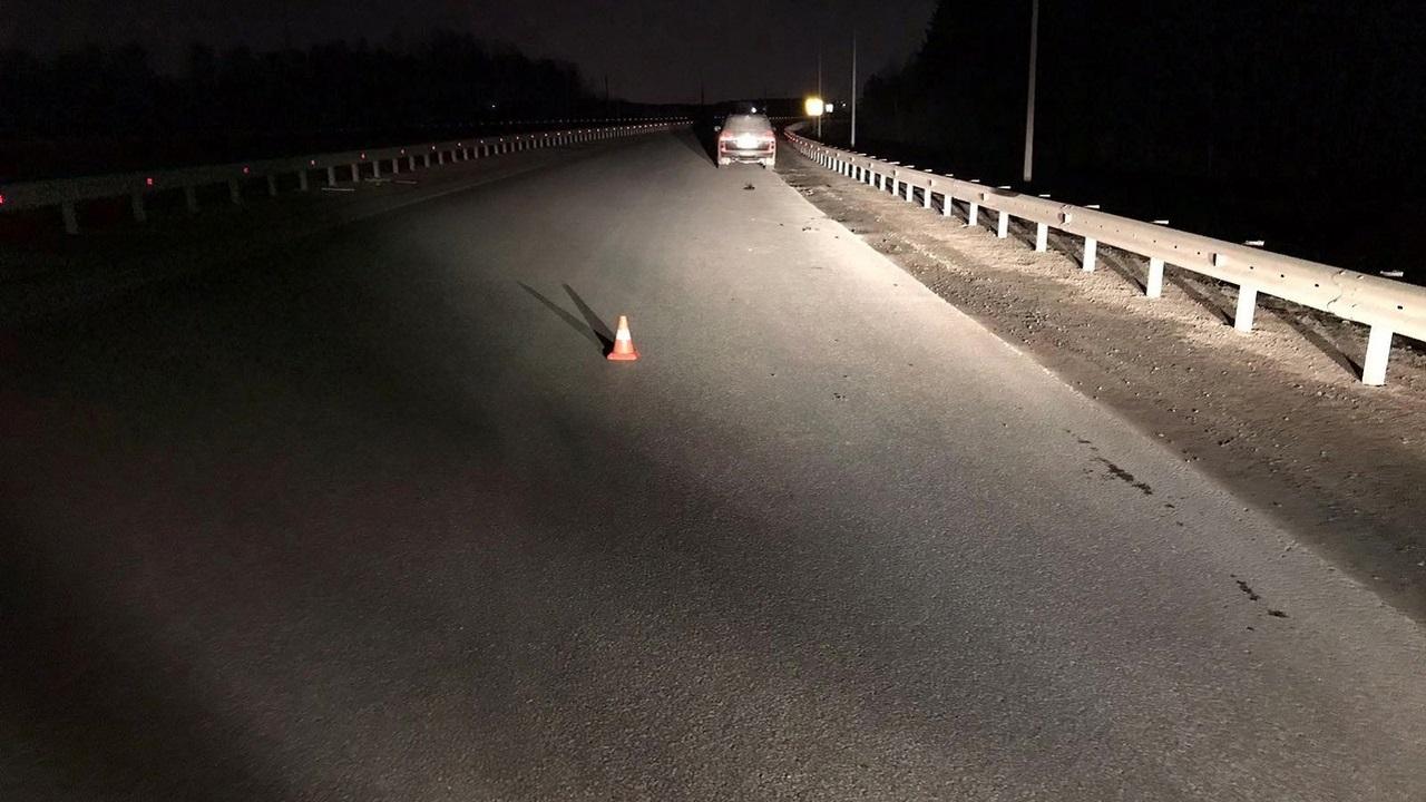 В Челябинской области разыскивают водителя, который насмерть сбил мужчину на трассе