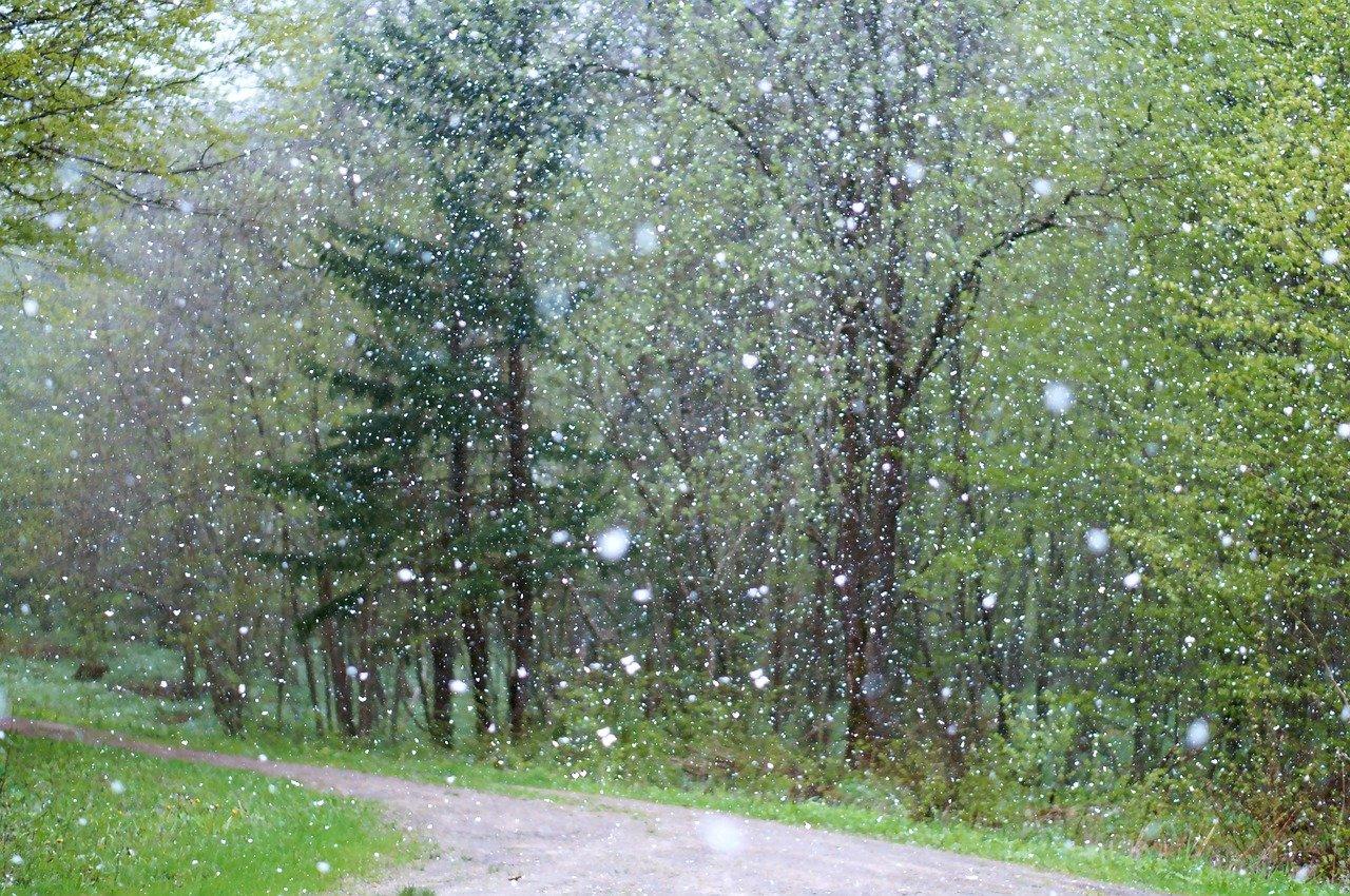 В Челябинской области ожидаются похолодание, снегопад и крепкий ветер