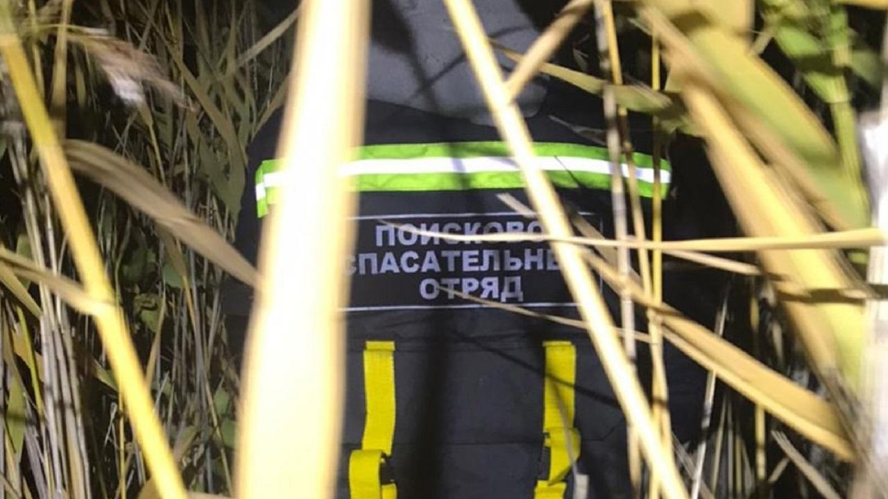 В Челябинской области пенсионерка ушла за ягодами и застряла в болоте