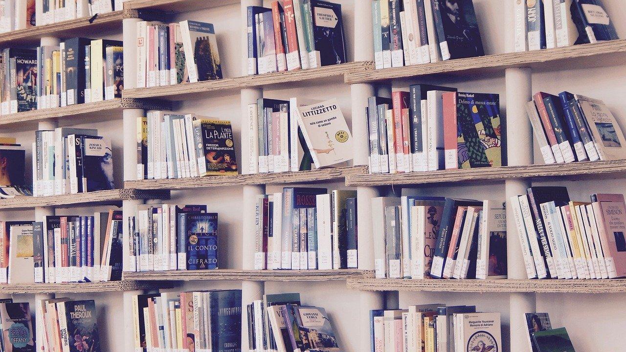 Эксперты рассказали, какие книги нравятся челябинцам