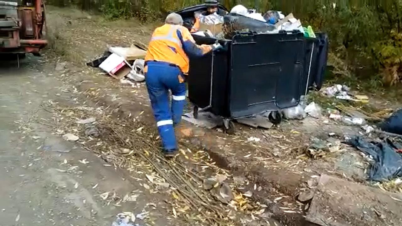 Три поселка Челябинской области рискуют утонуть в мусоре