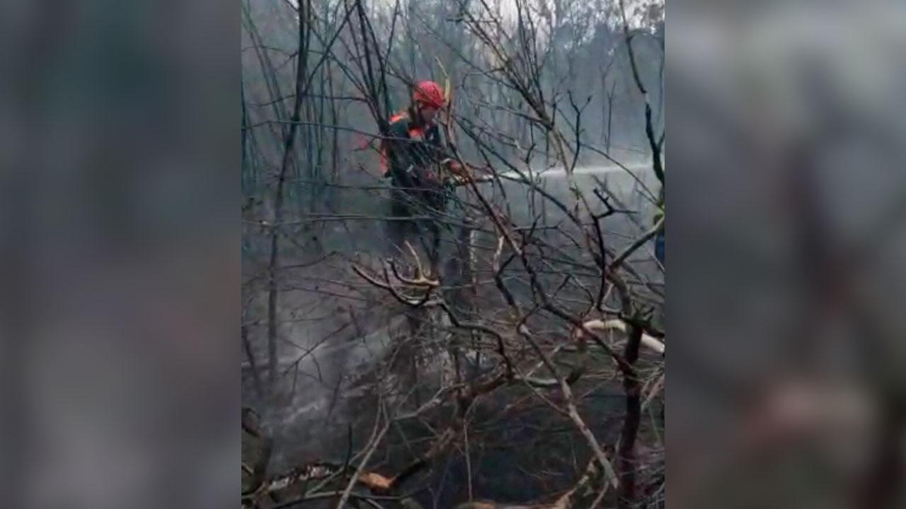 При тушении природного пожара в Челябинской области нашли мужчину с ожогами