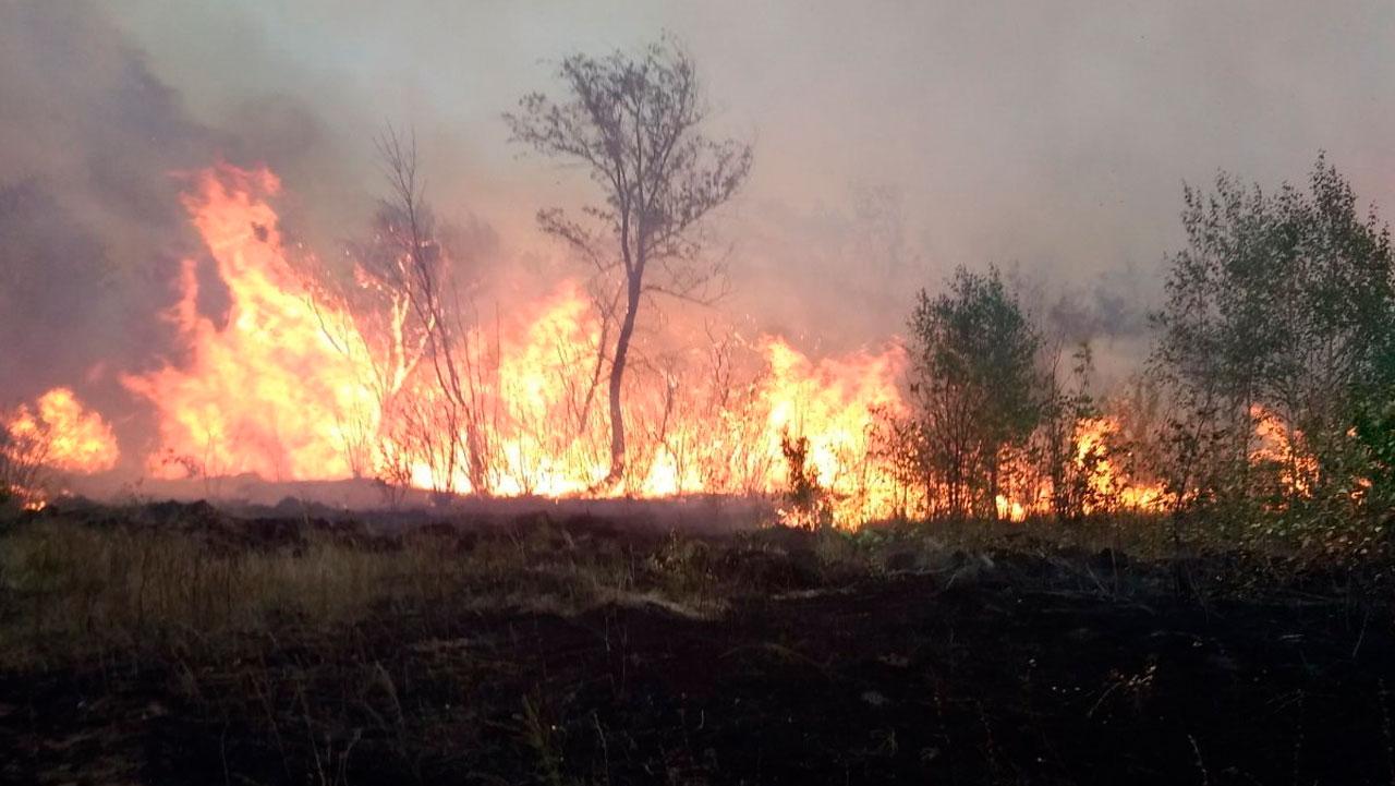 Прорвало газопровод: природный пожар произошел в Челябинской области