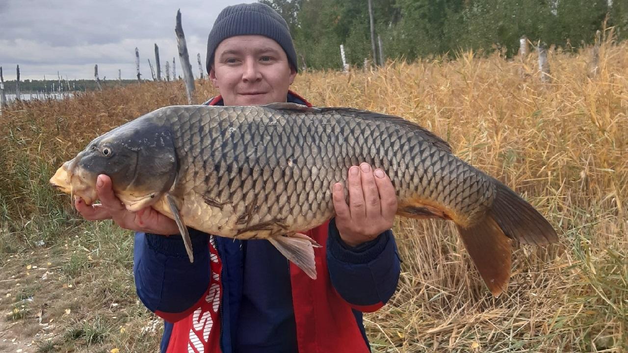 Жирные карпы и щуки: рыбаки в Челябинской области хвастаются уловом ФОТО
