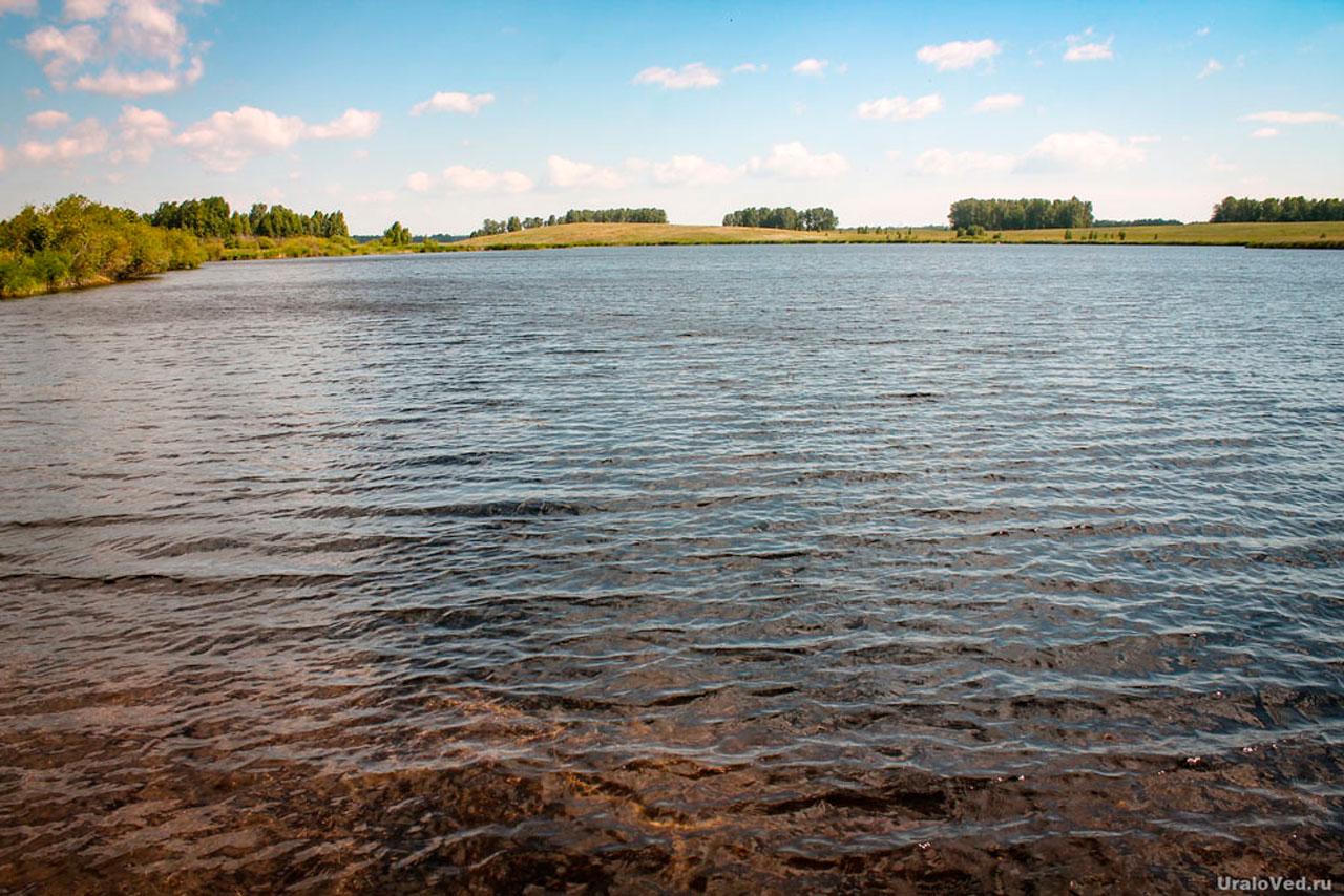 Плавающий остров нашли на водоеме в Челябинской области