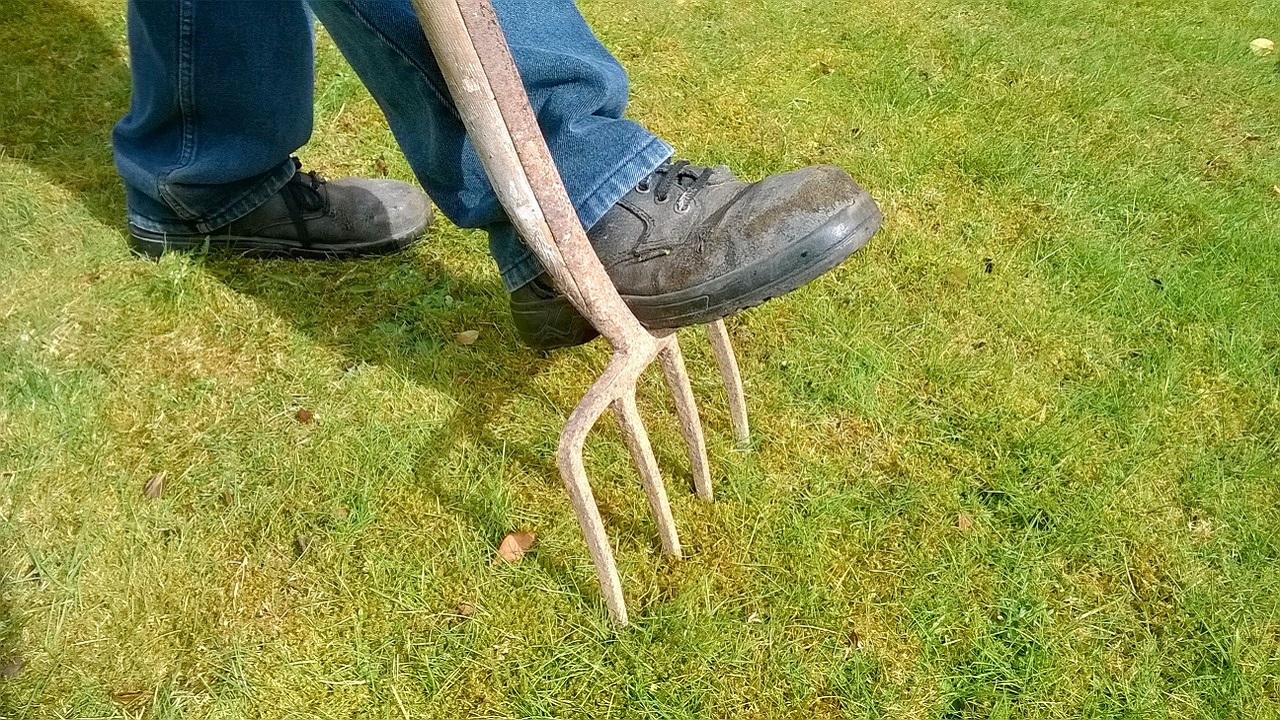 В Челябинской области открылась выставка садовых инструментов