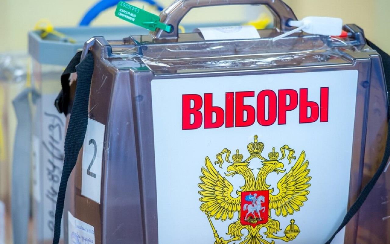 Школьники Челябинска частично перейдут на дистант во время выборов