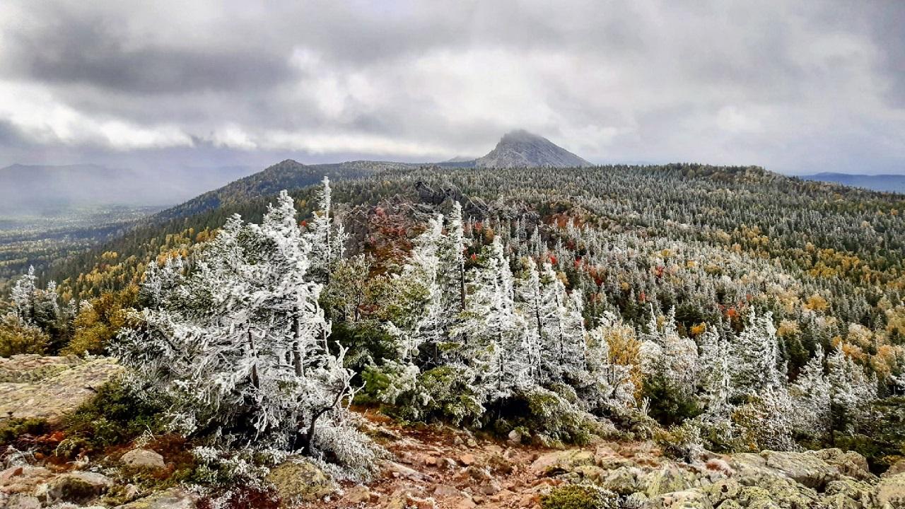 В лесах Челябинской области выпал первый снег