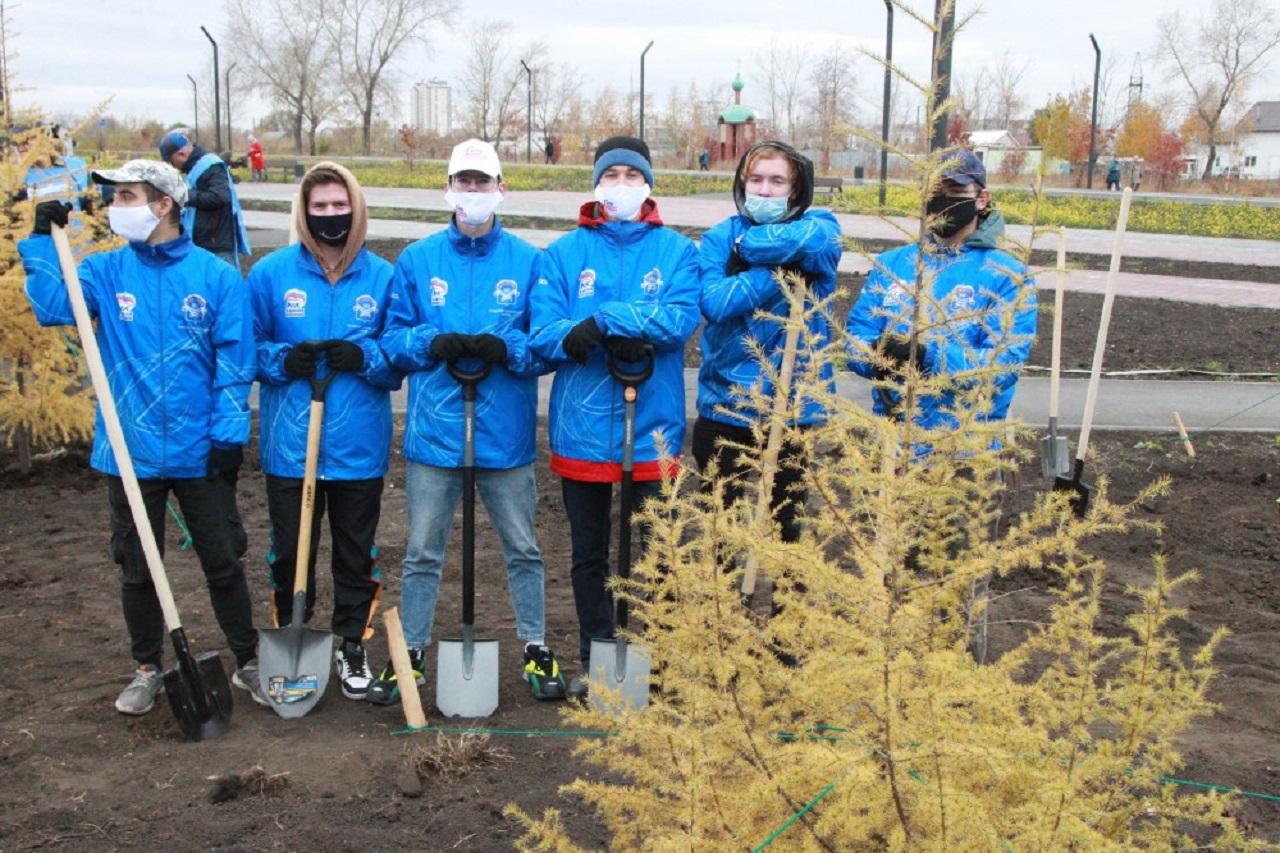 В Челябинске высадили новую партию морозостойких «олимпийских» деревьев