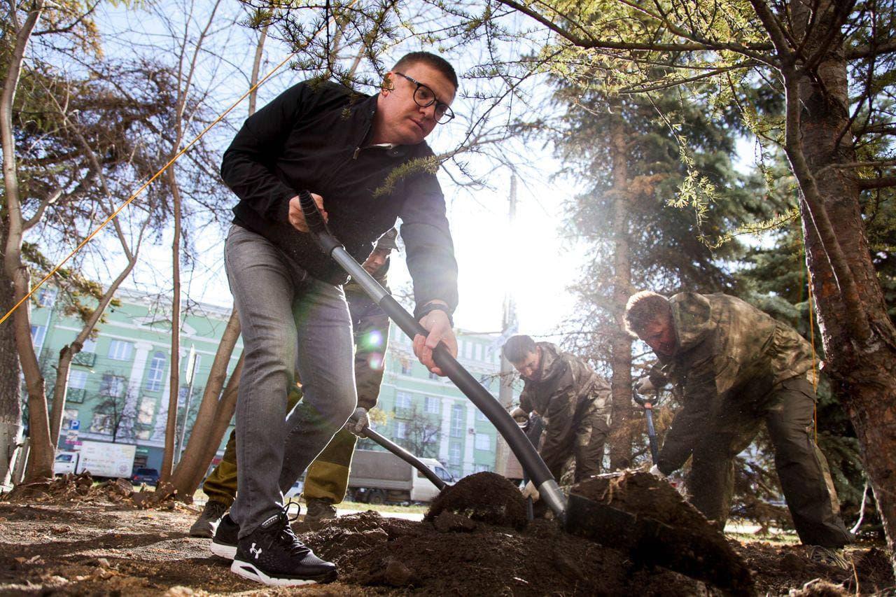 Новые даурские лиственницы высадили в Челябинске