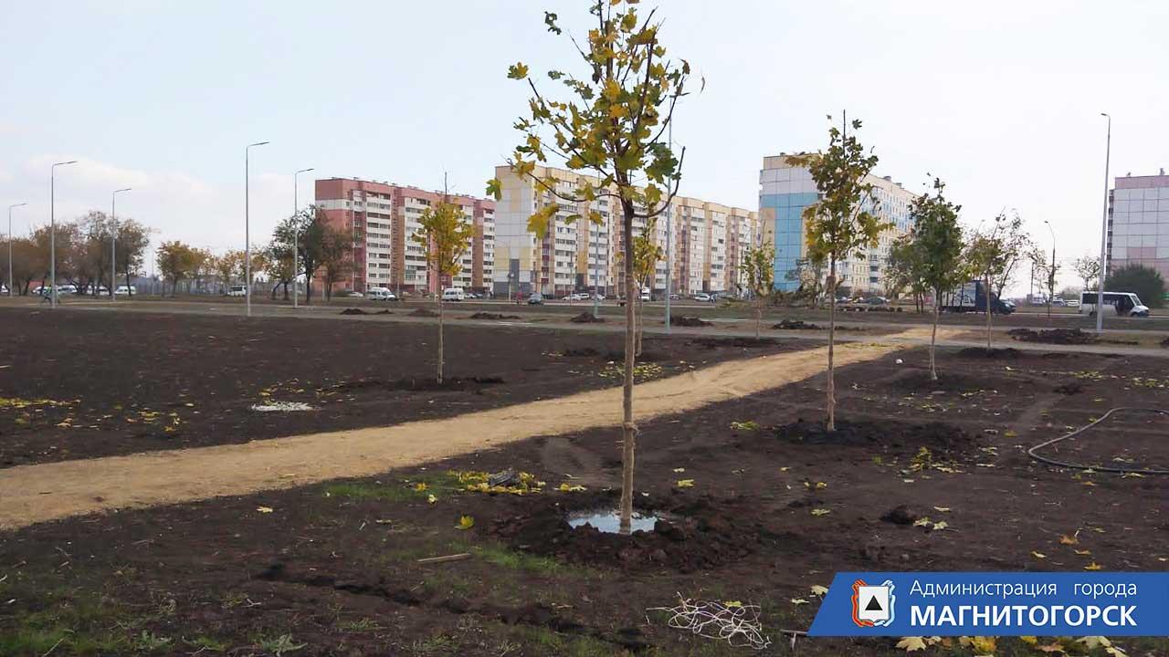 9 тысяч деревьев и кустарников планируют высадить в Магнитогорске