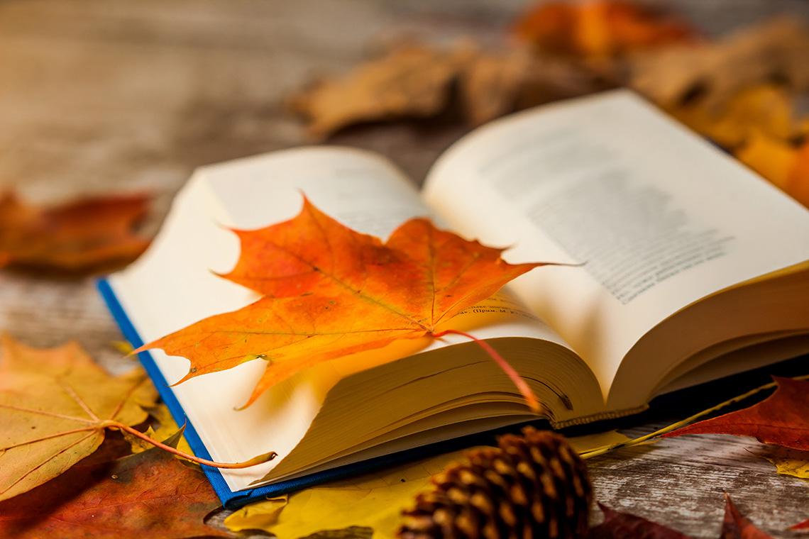Список книг для чтения осенью: как встретить старость и не загрустить