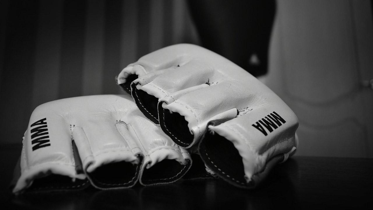 В Челябинске могут провести чемпионат мира по MMA