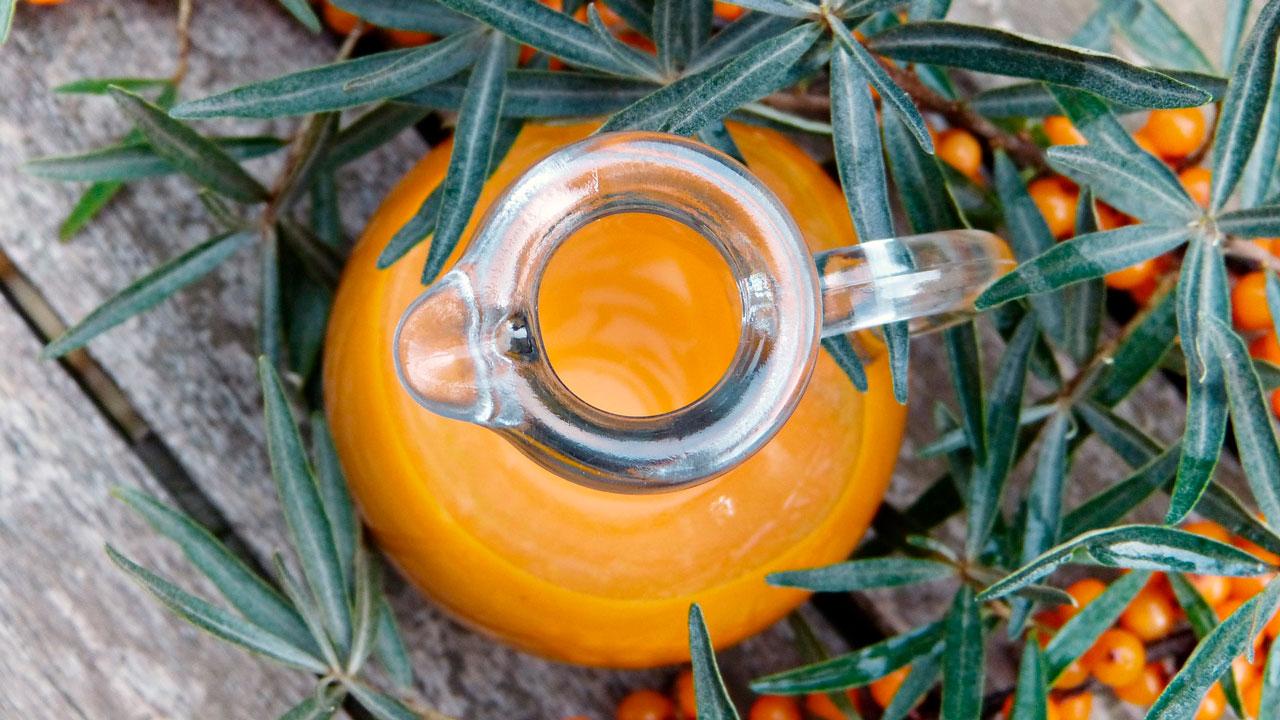 Правильное питание осенью: составлен список продуктов октября