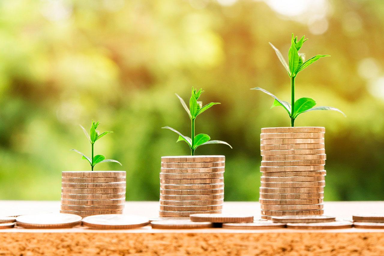Приметы об удаче и богатстве: 10 знаков, которые предсказывают успех