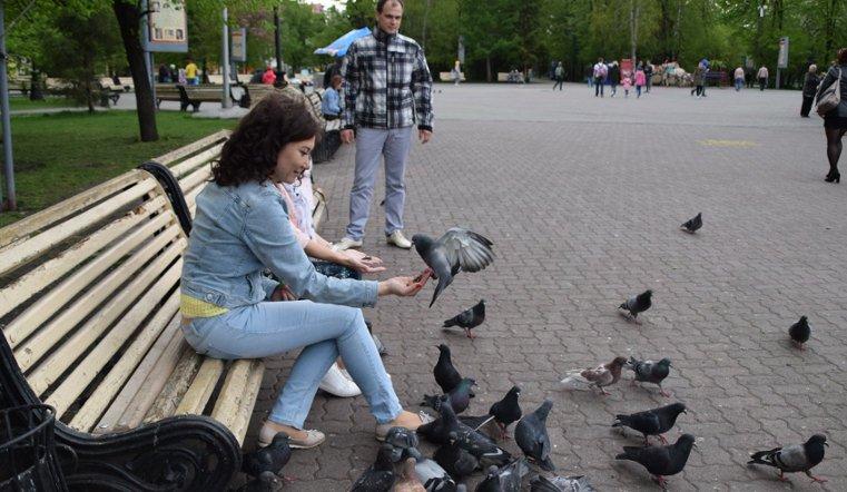 Vesna v ChelyabinskeG10