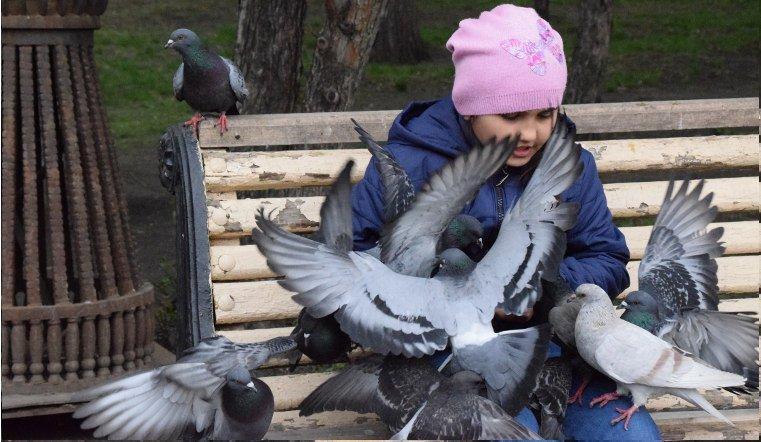 Vesna v ChelyabinskeG2